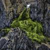 Quality Street (markrd5) Tags: anglesey llandwynisland rocks greenstuff lichens geology frozenwaterrocksands