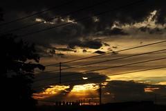 da sacada (Ruby Ferreira ®) Tags: sacada balcony silhuetas silhouettes pôrdosol sunset fios prédios wires clouds nuvens árvore tree