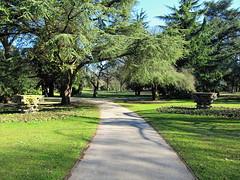 Cannon Hill Park (mclean25) Tags: birmingham park city centre public west midlands england uk path pathway trees grass pedestals shadows branches leaves landscape