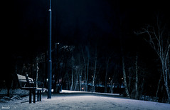 notte (_esse_) Tags: notte night buio dark darkness silenzio silence freddo cold neve snow lampioni lamps panchina bench bosco woods waitingfor blue norvegia norge tromsø fujixt2