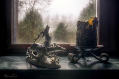 Deer (Michal Seidl) Tags: abandoned house verlassene haus opuštěný dům hdr urbex infiltration germany detail canon