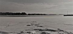 WP_20160227_09_16_26_Pro (www.ilkkajukarainen.fi) Tags: mustavalkoinen monochrome water vesi happy life suomi finland suomi100 eu europa scandinavia nature luonto landscape travel traveling blackandwhite visit matinkylä espoo