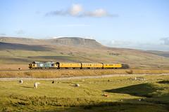 37025 Selside _DSF0410 (Burt-le-Salmon) Tags: 37025 class37 largelogo mossend derbyrtc selside penyghent railway sc settleandcarlislerailway