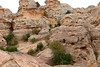 Little Petra, Jordan, January 2018 1369 (tango-) Tags: giordania jordan middleeast mediooriente الأردن jordanien 約旦 ヨルダン albeidha littlepetra