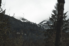 mountain gems (ashtenphoto) Tags: mountain mountains green snow peak peaks baggers bagger pnw pacific northwest pacnw snoqualmie pass