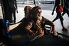(Gustavo Minas) Tags: rodoviária busstation station brasília brasilia brazil brasil fotografiaderua documental streetphotography gustavominas transportepúblico estaçãodeônibus publictransportation