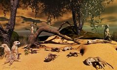 The Meerkats. (delilahhannu) Tags: lb │t│l│c│ ultra senseevent ultraevent blogging secondlife sldecor animals trees flowers desert