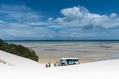 Snow Blind (- Jan van Dijk -) Tags: australia au qld queensland moretonisland sand zand sanddunes dunes duinen tour 4wdbus kooringal bright white