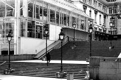 The man and the staircase (pascalcolin1) Tags: paris12 garedelyon homme man escalier staircase réverbères lamppost photoderue streetview urbanarte noiretblanc blackandwhite photopascalcolin 50mm canon50mm canon