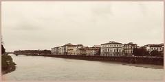 La piena (Domenico T) Tags: arno river