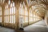 Wells Cathedral Cloisters (Rich Walker75) Tags: wells cathedral cathedrals architecture photography canon eos100d efs1585mmisusm eos england somerset historic history buildings building cloisters