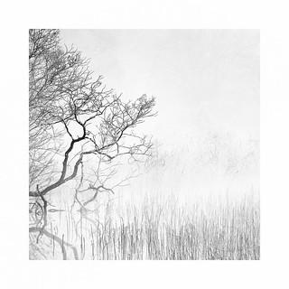 A Winter sketch