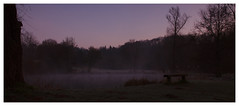Dark Theme (Max Angelsburger) Tags: silhouette lake deutschland germany badenwürttemberg badenwuerttemberg grosglattbach village natur light dawn dark mood wald wood wanderlust hiking exposure view bench wooden countryside landscape landschaft mist fog damp march 2018 weather walk pretty spring purple sky mystic nature blue night tree atmosphere weekend valley soft freezing morning crispy naturereserve romantic silence grass duck grosglattbacherriedberg see seen