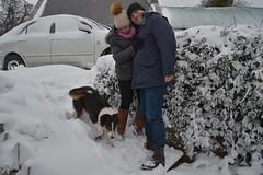 DSC_8019 (seustace2003) Tags: baile átha cliath ireland irlanda ierland irlande dublino dublin éire glencullen gleann cuilinn st patricks day zima winter sneachta sneg snijeg neve neige inverno hiver geimhreadh