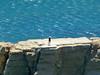 Viento (alvaro31416) Tags: pnatcabogata elplayazo mediterraneo viento
