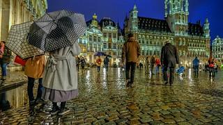 Les parapluies de Bruxelles