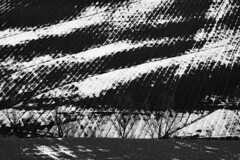 Like abstract landscape (NV3PARYCESK4AU3UGN3X532HOL) Tags: inverno campagne regionemarche blackandwhite collineinnevate neve
