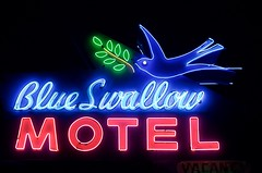 Blue Swallow Motel (dangr.dave) Tags: tucumcari nm newmexico neon neonsign downtown historic architecture route66 blueswallowmotel quaycounty