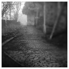 Gog Hill (1x1) (Father Pie) Tags: lensbaby blur edge50 elland goghill mist fog mono blackwhite