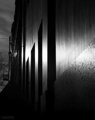 Light in the Ally by #MrOfColorsPhotography #ThisIsGroningen #InspireMediaGroningen (mrofcolorsphotography) Tags: blackandwhite black blackandwhitephotography photographer photography photooftheday photo photos city cityphotography canon canonnederland canonphotography canon80d streetphotography street grey white sunlight sun sunny sunshine sundown create creative art dillenvandermolen journeyofcolors journey inspiremedia inspiremediagroningen thenetherlands netherlands holland building old house fotografie foto straat portfoliofocolors