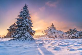calm winter evening