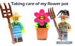 Taking care of my flower pot (WhiteFang (Eurobricks)) Tags: lego collectable minifigures series city town space castle medieval ancient god myth minifig distribution ninja history cmfs sports hobby medical animal pet occupation costume pirates maiden batman licensed dance disco service food hospital child children knights battle farm hero paris sparta historic brick kingdom party birthday fantasy dragon fabuland circus