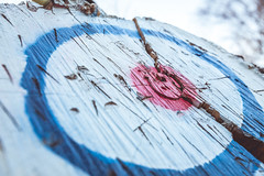 Taylor's Axe Throwing 33rd Birthday Party-4154 (taylorsloan) Tags: axe ax throwing party birthday idea diy buildyourown axethrowing stump