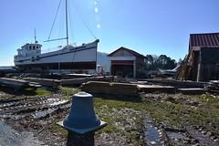 1920 Buyboat Winnie Estelle on the marine railway (Chesapeake Bay Maritime Museum Photos) Tags: winnie estelle cbmm chesapeakebaymaritimemuseum buyboat buy boat 1920 working shipyard scenic river cruises miles