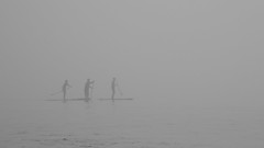 """""""Dedicated"""" is one of my images in the photo essay """"At Home in Malibu"""" in the Spring 2018 edition of the Malibu Times Magazine. (remiklitsch) Tags: malibu fog paddleboarders remiklitsch nikon malibutimesmagazine pacific ocean winter california panoramic photoessay silhouette"""
