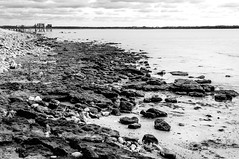 Baie d'Yves (Fabrice Denis Photography) Tags: seascapephotography noiretblanc bwphotography coastalphotography monochromephotography sea blackandwhitephotos cabanedepêcheurs blackandwhitephotographer ocean monochrome carrelets coastal oceanphotography blackandwhite seascapephotographer seascapes seascapephotos blackandwhitephotography yves nouvelleaquitaine france fr