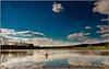 Selfish, arrogant swan from Moravia (piontrhouseselski) Tags: cz south moravia spring lake pond swan clouds