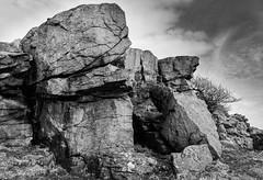 1920p 72dpi-6239-2 (R W Gibbens Photo) Tags: forestofbowland gritstone millstonegrit rock crag littlecrag lancashire england uk monochrome blackandwhite blackwhite