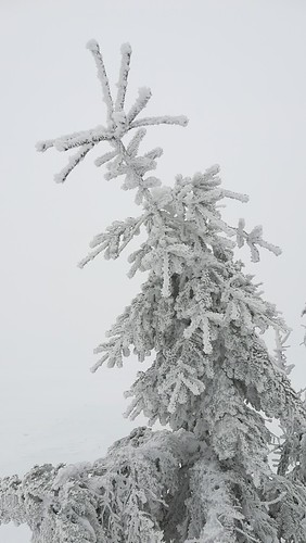 Riesengebirge Feb.2018