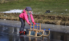 The easiest way to learn ice-skating (B℮n) Tags: stavoren friesland rijksmonument schaatsen ice skating slee slede ijs ijspret súdwestfryslân voorstraat sled sleigh sledge child kids 2maart2018 cold frozen lakes winter weather skate speed skaters windy temperature snow natural surface seaofice naturalice nature reserve netherlands iceskating tour skater thick smooth viking holland sport season frigid elfstedendtocht lake natuurijs wilderness dutch freeze schaatsgekte schaatstocht chill extreme girl kid learn childhood 100faves topf100
