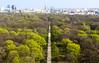 Berlín_0321 (Joanbrebo) Tags: tiergarten canoneos80d eosd efs1855mmf3556isstm autofocus park parque berlin alemania de parc cityscape arbol arbre tree
