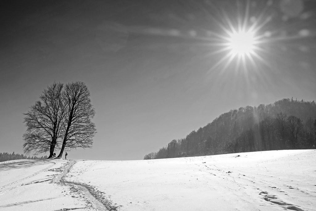 Pieniny. Road to Wysoka peak. Poland.