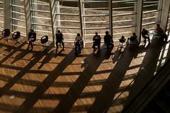 noon (mntkondr) Tags: japan tokyo thenationalartcentertokyo shadow sitting backlight fujifilm xh1 people kishokurokawa 1025fav