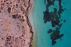 Tamala Station Coastline (BenParkhurst) Tags: outback benparkhurst tamalastation aerial arid seagrassbeds saltwater blue wild ocean drone seagrass 2017 wa rangelands coast australia westernaustralia