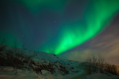 Aurora Alta (Comfy King) Tags: aurora borealis northern lights norway arctic polar night green glow wisp astrophotography hill landscape long exposure travel