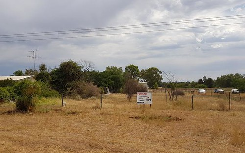 342 Lindner ave, Peak Hill NSW