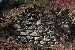 ruine (bulbocode909) Tags: valais suisse leslarzettes ruines murs murenpierres forêts nature montagnes vert