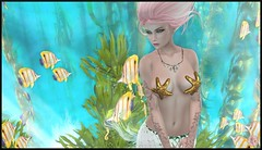 Snapshot_017 (ReenaStark) Tags: sl secondlife avatar avatars pinkhair lady girl woman inworld mermaid mermaids underwater water sea seas ocean oceans beach beaches fish seaweed fantasy mythical myth mythicalcreature