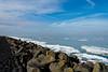 _DSC3103 (durr-architect) Tags: dike road almere lelystad oostvaardersplassen ijsselmeer lake markermeer ice water sea grass bike sky field
