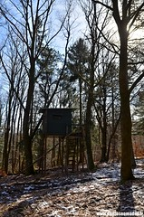Miradors (Phil-PhotosNomades) Tags: mirador chasse wisches valléedelabruche basrhin alsace grandest france forêt arbre bois affût