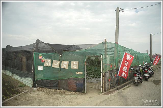 善化草莓 來去晴空農場找無農藥栽種的草莓 (2)