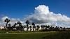 La gran nube. The big cloud. (.Guillermo.) Tags: cádiz andalucía spain nikon sigma1750 sigma nubes clouds paisaje paisajes landscape landscapes cielo sky verde azul palmeras