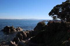 IMG_7607 (mudsharkalex) Tags: california pacificgrove pacificgroveca