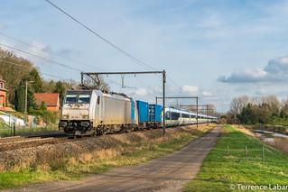 La BR186 253 assurant le transfert d'un E320 pour Eurostar ici en passage à Testelt
