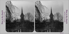StSteeple-2-stCard- (device9) Tags: fuji acros100 analog film bw monochrome landscape contrast light shadow analogue vintage wood forest tree stereoscopic neopan acros voigtlanderbessa1 vaskar d76 church architecture americana