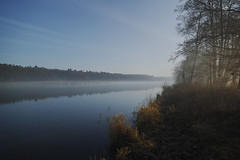 ... die alte Oder bei Oderberg (wellenkern) Tags: fog nebel dunst smoke water onthe